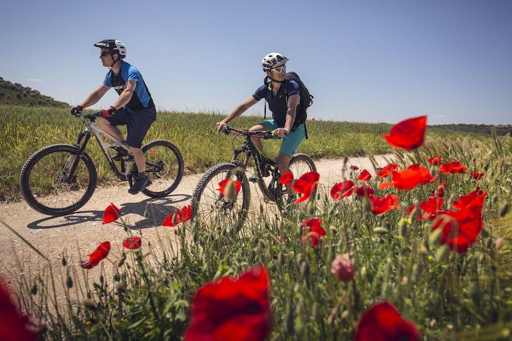 La imagen tiene un atributo ALT vacío; su nombre de archivo es Bguara-cycling-rocks-Wallride-revista4.jpg