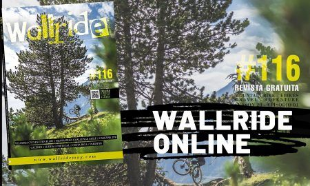 WALLRIDE ONLINE-116